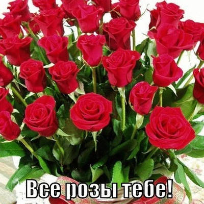 Антон Громов, 5 февраля 1986, id210363143