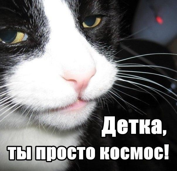 http://cs303707.userapi.com/v303707433/3d75/nJlINJXdsRg.jpg