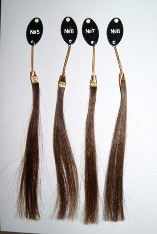 Выпадение волос нарушение секрета сальных желез