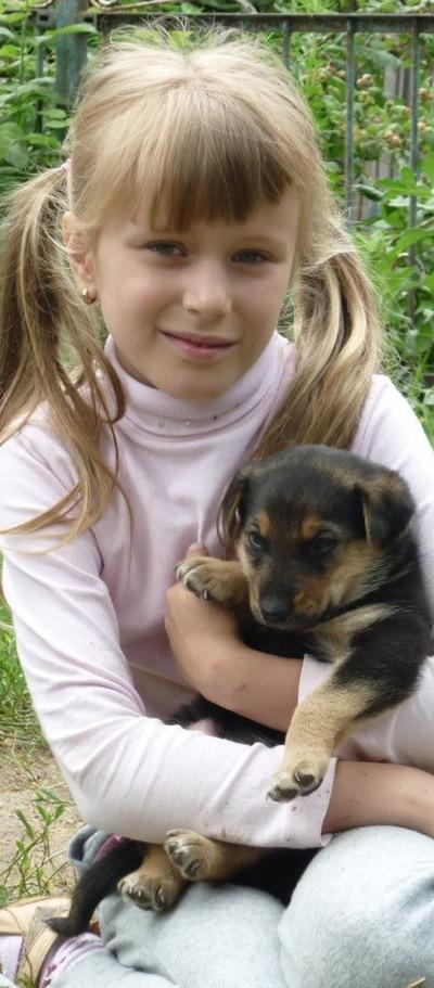 Полина Волкова, 6 июля 1999, Минск, id184632313