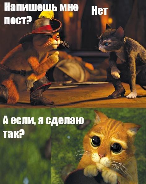 http://cs303806.vk.me/v303806928/3920/ezAD_e_MNCM.jpg