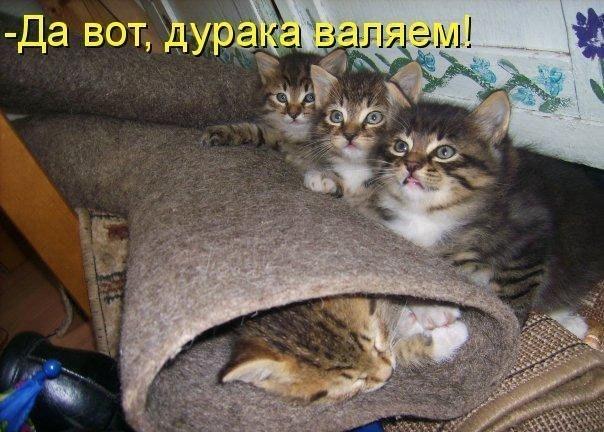 http://cs303808.vk.me/v303808813/3046/JccOaDPGs9A.jpg