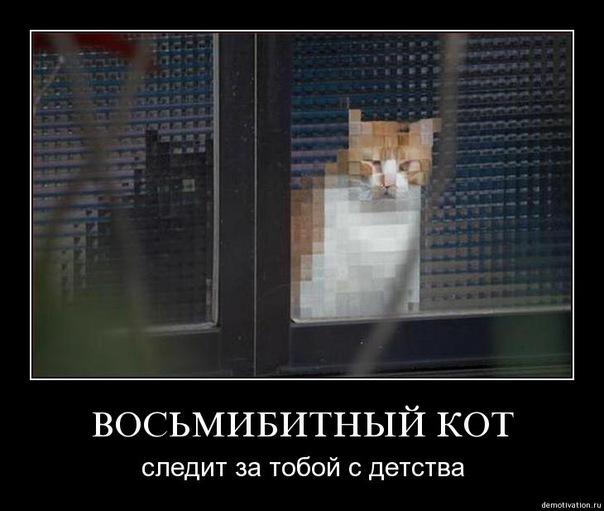 http://pp.vk.me/c303903/u18387204/144727247/x_f10a377d.jpg
