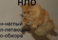 Ярослав Хованский