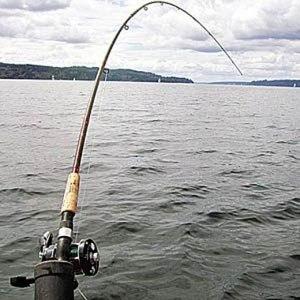 Секреты рыбалки на перловицу