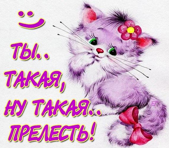 http://cs303904.vk.me/v303904109/1ac9/Oqyq7rmmYDs.jpg