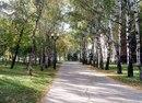 В Покровском парке началась генеральная уборка.  Санитарные службы.