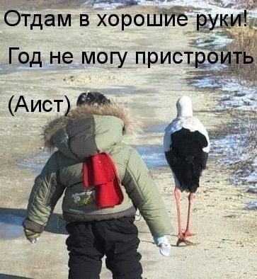 http://cs304103.vk.me/v304103957/40bd/U72A6DsJ5_M.jpg