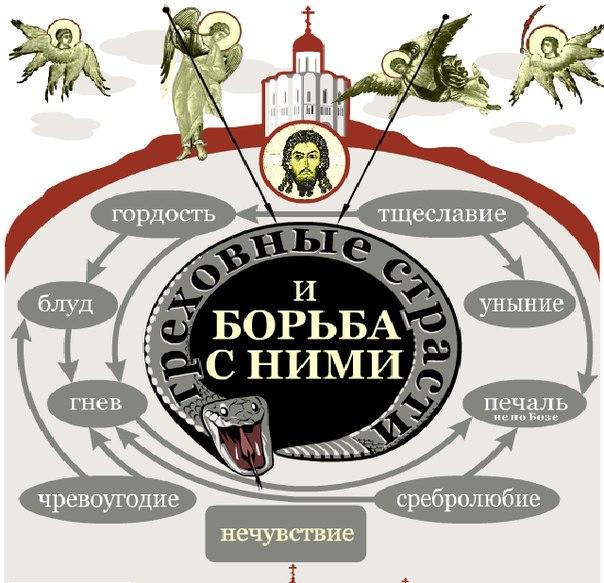http://cs304107.userapi.com/u147807400/-14/x_9754926b.jpg