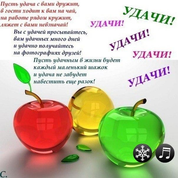 http://cs304107.userapi.com/u62090280/-5/x_3b1e0ed0.jpg