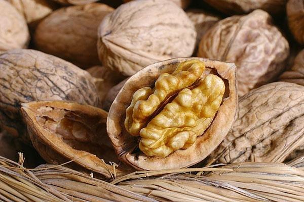 Кто хочет съесть ядро ореха должен