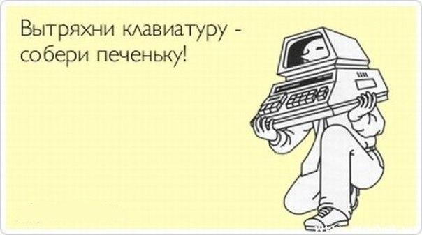 http://cs304109.vk.me/v304109347/3b86/6cD4moykOlo.jpg