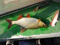 олег рыбак москва