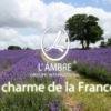 Французская парфюмерия и косметика от компании L'AMBRE.Работа,бизнес и хороший заработок(г.Уфа)