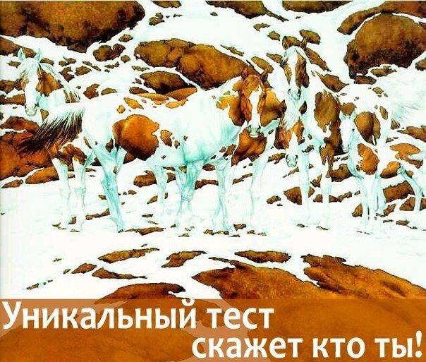 УНИКАЛЬНЫЙ ПСИХОЛОГИЧЕСКИЙ ТЕСТ Результат тебя удивит!  Итак, взгляните на рисунок, что вы видите? Если вы увидели в первую очередь лошадей - то ты обладатель..