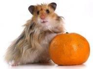 Не грусти, скушай мандаринку:)