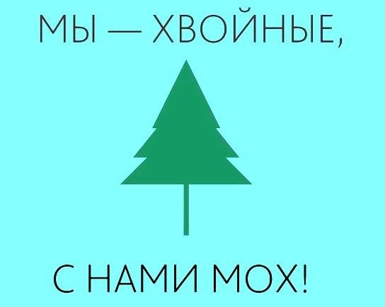 http://cs304301.vk.me/v304301218/646a/cOAdW0o8rIE.jpg