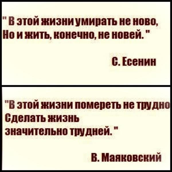 http://cs304301.vk.me/v304301607/5d48/xwNxbO-ceJM.jpg