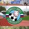 Федерация футбола Дмитровского района