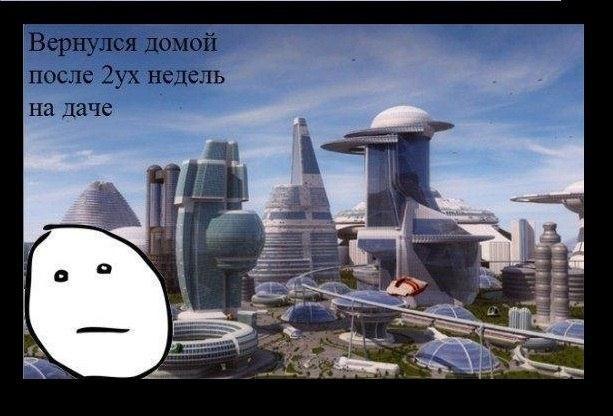 Остров русский владивосток фото убираются