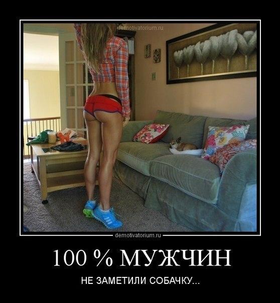 Организация типа женские стопы ног в колготках фото завербованные мужиках девки