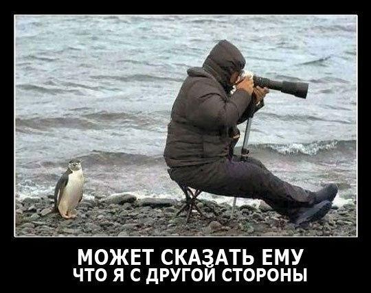 Извлеченный топ лучших советских мультфильмов счастья
