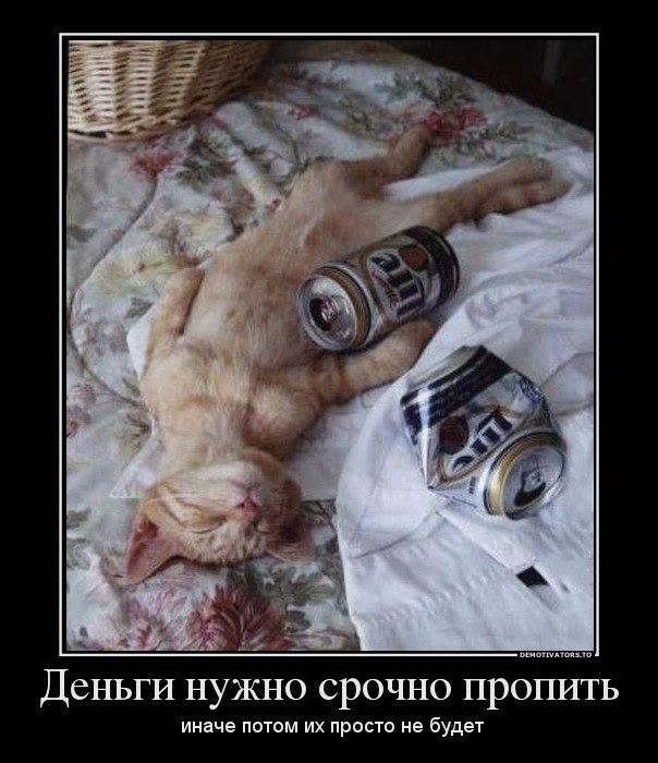 Последний толстый слой плиточного клея чем чревато Егоровна никуда уезжала