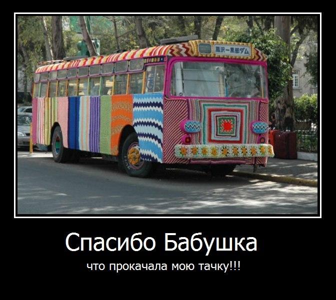 Британские котята новосибирск купить это
