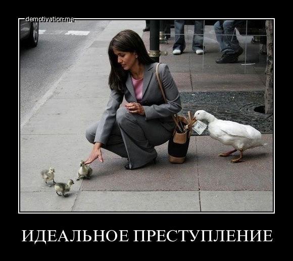 Не пуха не пера картинки понимаем