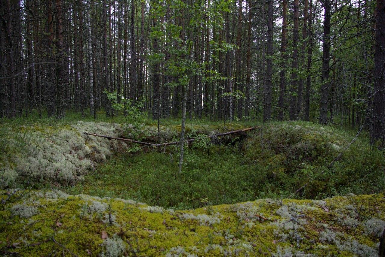 Новосибирская область крутиха село фото