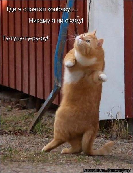ХА-ХА-ХА!!! DmmJYwypWXM