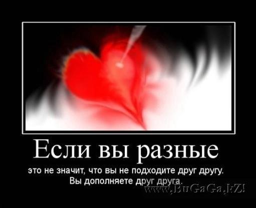 Дружба любовь отношение