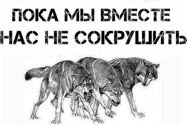 Россия и Украина. Братья или чужие? - Страница 6 X_5f5505f9