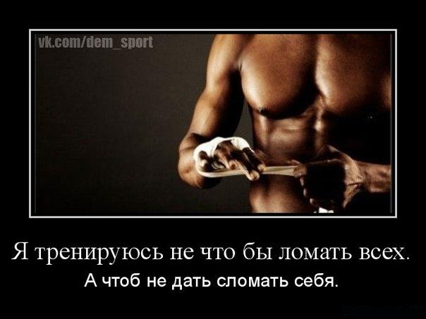 http://cs304512.userapi.com/v304512114/434f/mEGj2BU4wwI.jpg