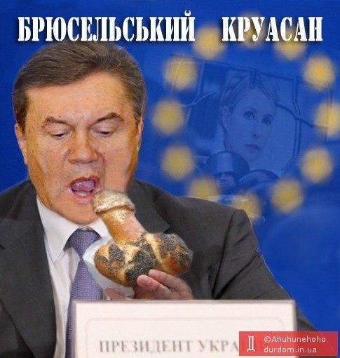 У Януковича назвали дату проведения саммита Украина-ЕС - Цензор.НЕТ 6680
