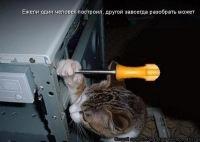 Алексей Клепиков, 13 июля , Сочи, id157232229