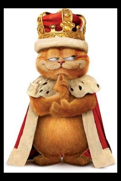 Картинка с гарфилдом царь просто царь
