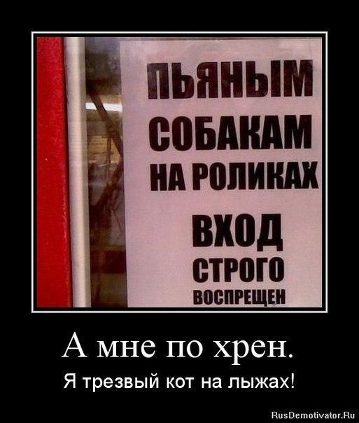 http://cs304611.userapi.com/u92590746/-14/x_a78c121c.jpg