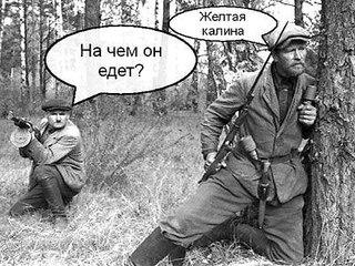 """В  """"ДНР"""" уверены, что Россия оплатит восстановление экономики Донбасса - Цензор.НЕТ 502"""