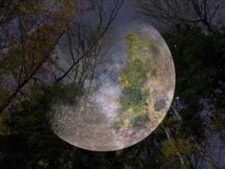Ion Suruceanu - Clar de luna