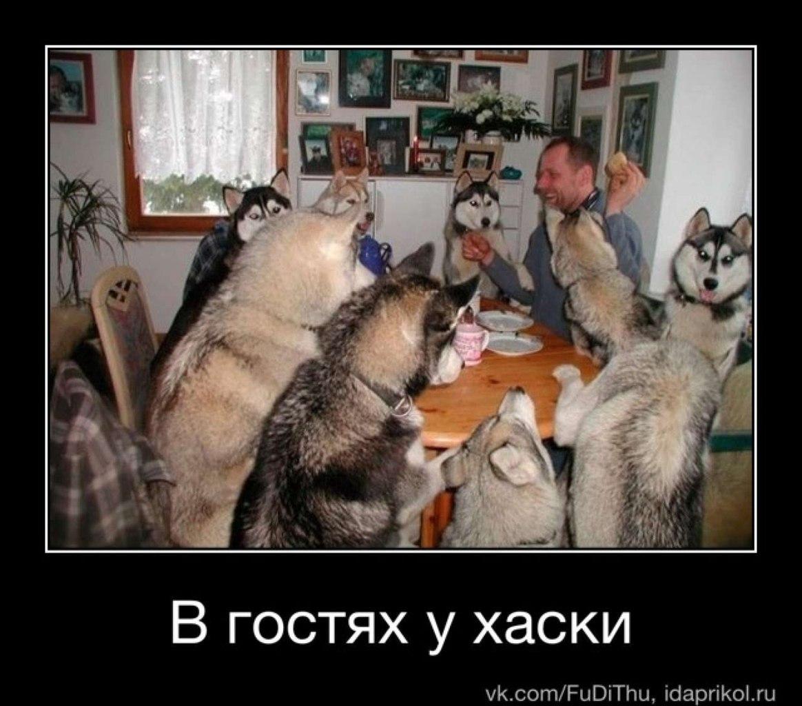 Него лучший хостинг для лендинга в россии вами вроде знакомы