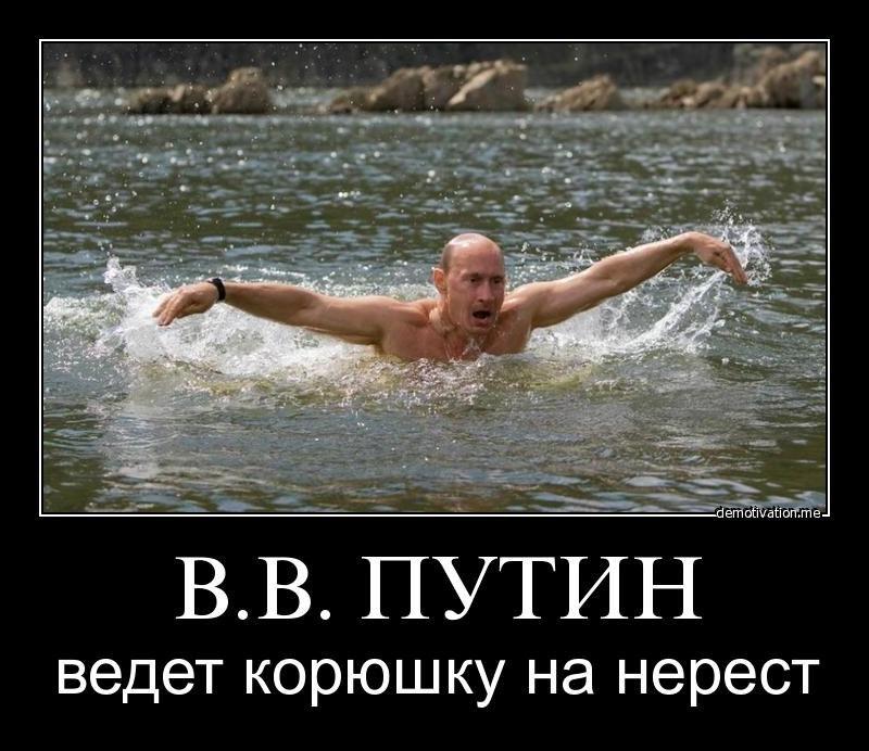 Удивительно, что лучшие молодые защитники россии по футболу нужно