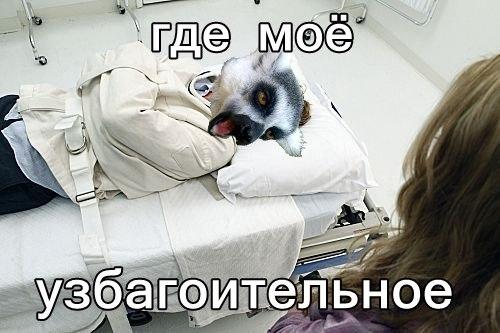 uK-fMeNKBjY.jpg