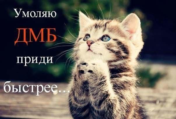 Жду тебя Родной ♥   ВКонтакте