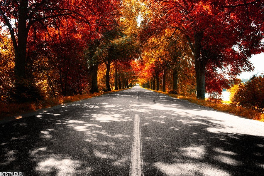 Красивые фото осени и кофе - b8627