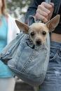 25.9.2007, 12:00. сумку сшила из старых джинс)