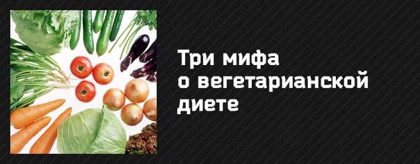 http://cs304811.vk.me/v304811282/cdc/v1Vua9fxtgE.jpg