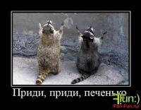 Андрей Енютин, 12 февраля , Мурманск, id124226551