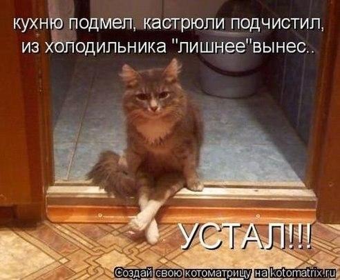 http://cs304813.vk.me/v304813447/6c41/xy7VgFx_PAE.jpg