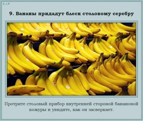 http://cs304902.vk.me/v304902440/8ffb/Ce5qcFZH8lI.jpg